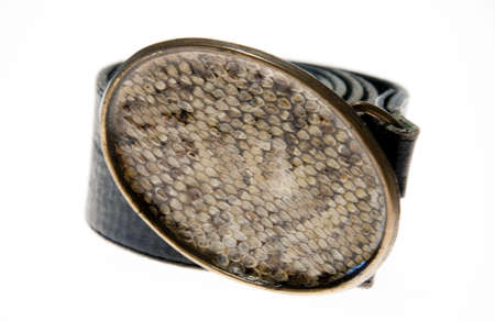 Animal (snake) skin belt isolated on a white background. Banco de Imagens