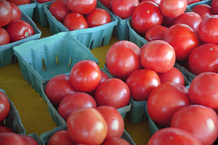 Tomatoes for sale in a florida market. Stock Photo - 6303838