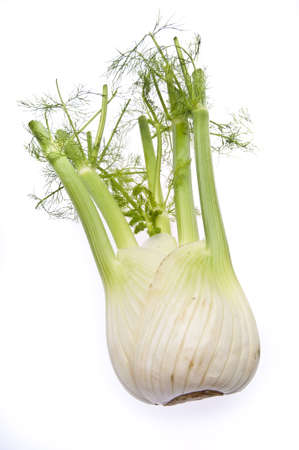 fennel: Fennel bulb isolated on white.
