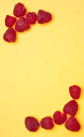 Raspberry Border on a vibrant yellow background.
