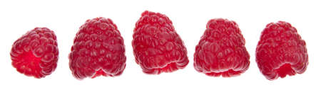 Line of raspberries