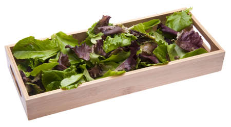romaine: Fresh Romaine Lettuce in a Wooden Box.