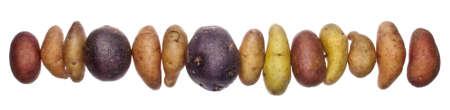 fingerling: Fingerling Artisan Heritage Potatoes Border Image.