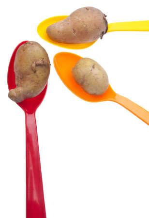 fingerling: Fingerling Artisan Heritage Potatoes are Small and Fit in Vibrant Colored Spoons. Stock Photo