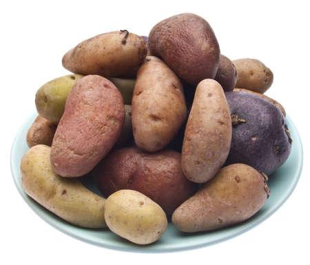 fingerling: Fingerling Artisan Heritage Potatoes on a Blue Plate.