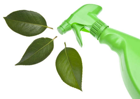 Natural Cleaning Concepts Stock Photo
