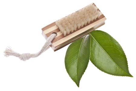 Natural Wood Scrub Brush with Leaves for a Green Environmentally Friendly Cleaning Image.
