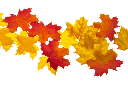 Autumn Leaves Perfect for Borders and Backgrounds. Banco de Imagens