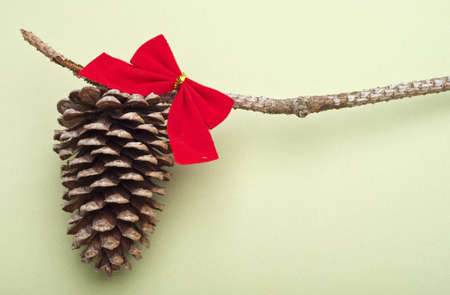 Holiday Pinecone with a Red Bow on a Green Background with Copy Space. Stock Photo