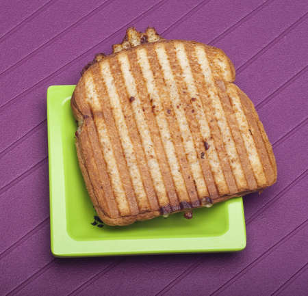 Toasted Cheese Sandwich on a Vibrant Background. photo