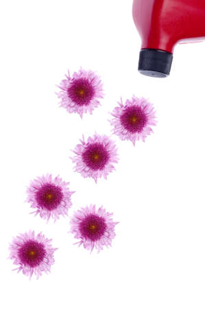 Oil Can Spilling Flowers Environmentally Friendly Concept Image.  Isolated on White Banco de Imagens