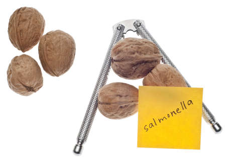 salmonella: Salmonella Warning Note with Fresh Walnuts Isolated on White