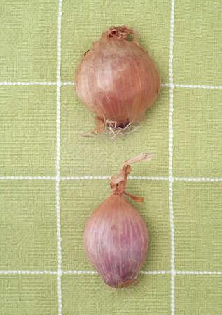 Coppia fresca di scalogno in verde asciugatutto Archivio Fotografico - 8683218