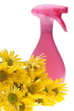 Natural Spring Cleaning Concept with Pink Spray Bottle and Flowers. Stock Photo
