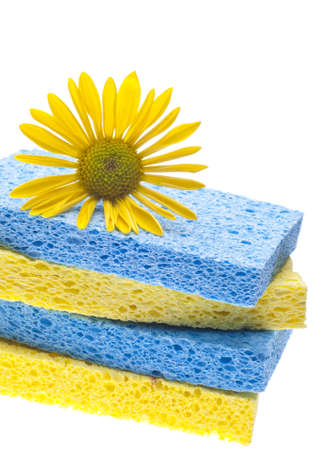 Natural Spring Cleaning Concept with Sponges and Daisy. Stock Photo