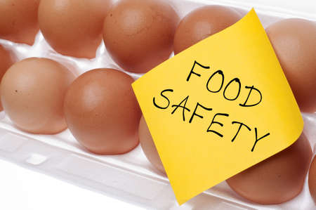 food safety: Eggs Can Carry Salmonella Food Safety Concept Concept with Brown Egg and Yellow Note. Stock Photo