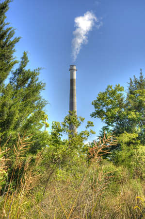 Smoke Stack with Smoke Framed by Natural Fresh Vegetation. photo