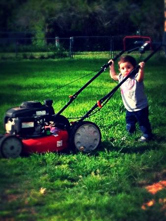 베이비 푸시 잔디 깎는 기계