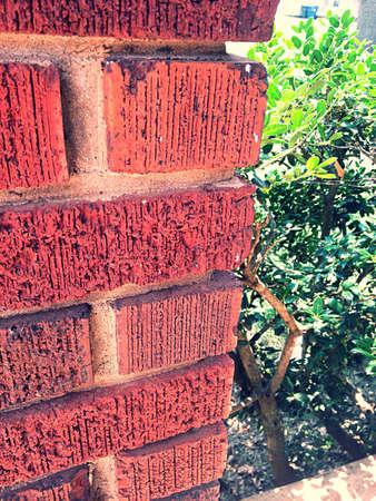 rough: Rough looking bricks