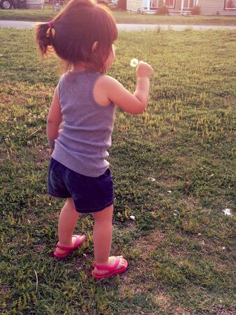 blowing dandelion: Bambina che soffia il dente di leone Archivio Fotografico