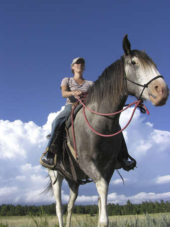 Spanish Mustang and rider photo