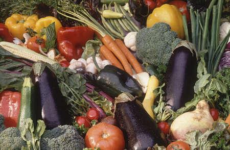 bounty: vegetable bounty Stock Photo