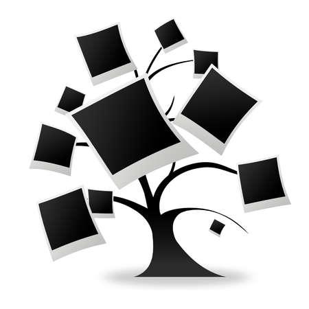 Tree photos logo