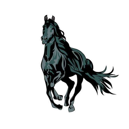 wild black horse running Illustration