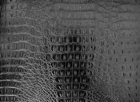 Black textured snakeskin paper photo