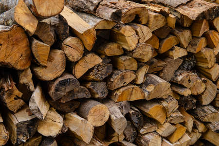 stack of firewood: Stack of dry firewood