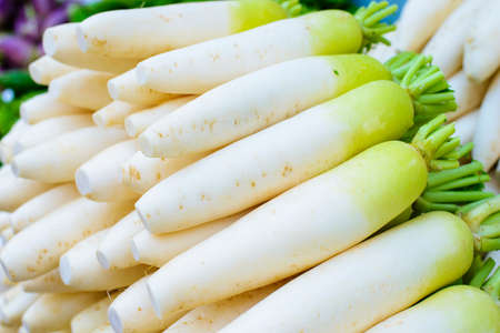 Asian giant white radish Stok Fotoğraf