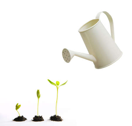 watering pot: Three small tree with watering pot Stock Photo