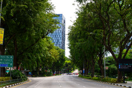 Roads with green tree in Singapore