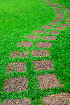 Stone path in the infield grass