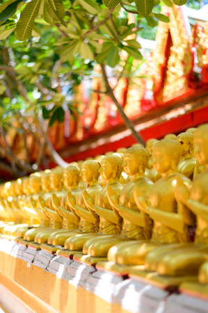 Row of golden buddha statues at temple