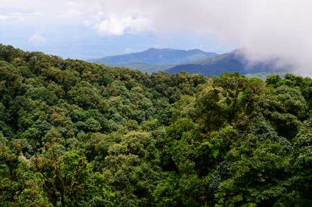 Mountain view with clouds and fog in Chiang Mai, Thailand Stock Photo