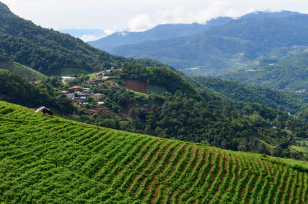 Mountain view with village in Chiang Mai, Thailand Stock Photo