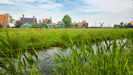 Typical Dutch landscape with houses and vegetation