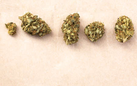 Detail of legal marijuana flowers photographed on paper background