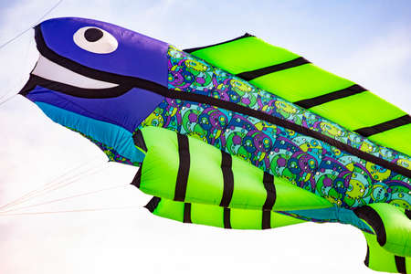 Flying kite with Fish-shaped colored green and purple Zdjęcie Seryjne
