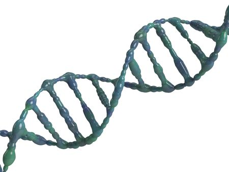 An isolated dna molecule on white background photo
