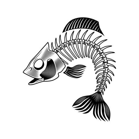 Bass bones vector illustration