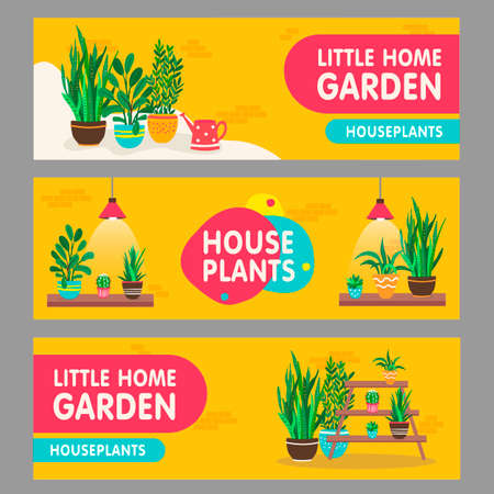 Home plants banners set