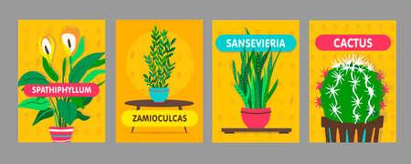 Home plants posters set