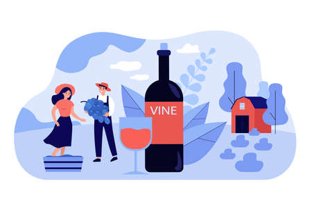 Happy tiny couple producing natural wine flat vector illustration. Cartoon characters growing organic grapes for making wine. Alcohol drinks and production concept Иллюстрация