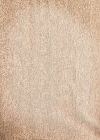 A high resolution scan of brown parchment paper. Stock Photo - 6615762