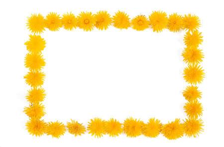 simple border: Dandelion - frame Stock Photo