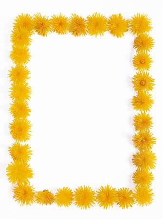 Dandelion - frame Stock Photo