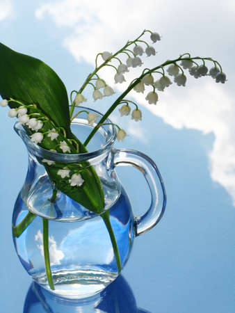 magic lily: lily of the valley in jug