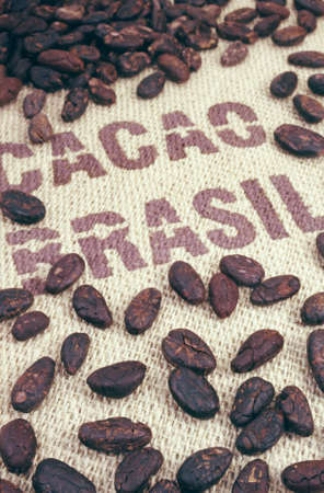 marking up: Cocoa beans and hessian Stock Photo